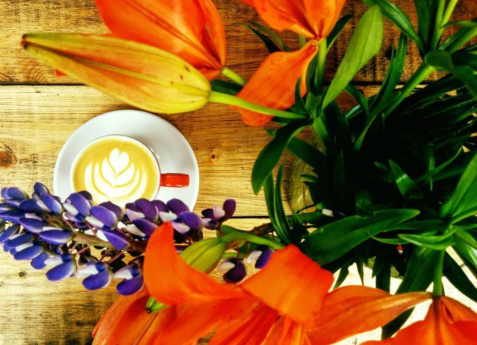 cafenea Cafenea într-o croitorie, un nou concept la Brașov cafea15
