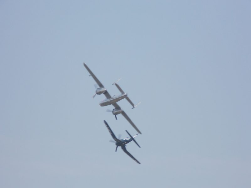 dscn2512 visez că zbor şi zbor Visez că zbor şi zbor DSCN2512 1 800x600