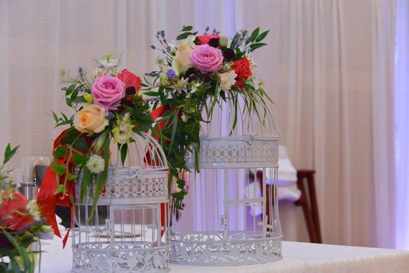 foto2 pasiunea pentru flori, afacere profitabilă Pasiunea pentru flori, afacere profitabilă foto2 800x533