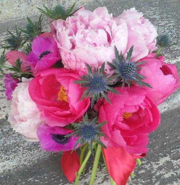 pizap.com14704198619461 pasiunea pentru flori, afacere profitabilă Pasiunea pentru flori, afacere profitabilă pizap