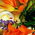 Cafenea într-o croitorie, un nou concept la Brașov