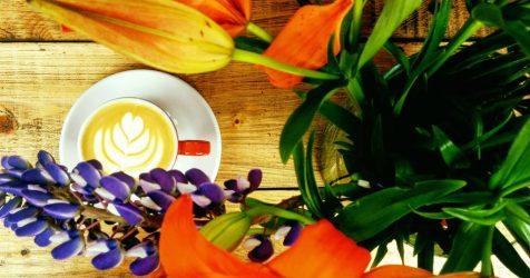 Croitoria de cafea, un nou concept la Brașov